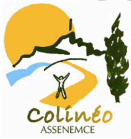 logo_colineo