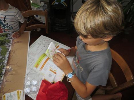 Boîte à compost pédagogique
